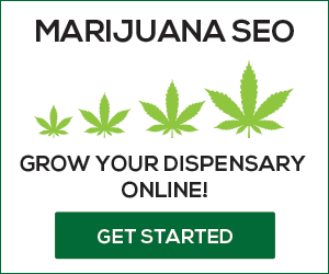 seo for dispensaries